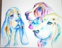 """The Bassets  - 22"""" x 22"""" watercolor"""