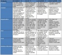 Research Rubric - Research Paper Rubric part 1