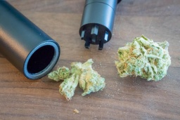 Pen-Simple-cannabis-Grinder-1024x683.jpg