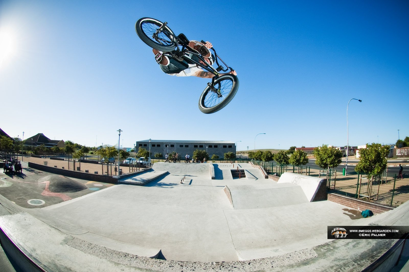 Steeze - Greg Illingworth