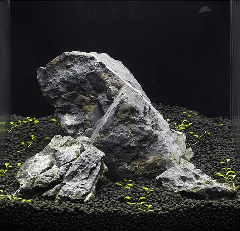 How create an Iwagumi Aquascape - Aquarium-life-cyprus